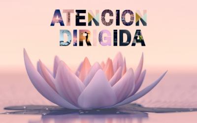 Atención Dirigida. Más allá de la meditación